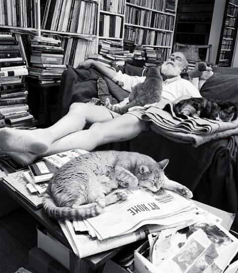 42andpointless: Edward Gorey con i suoi gatti