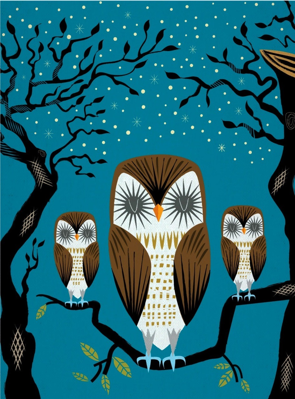 Three Lazy Owls Limited Edition Print by iotaillustration