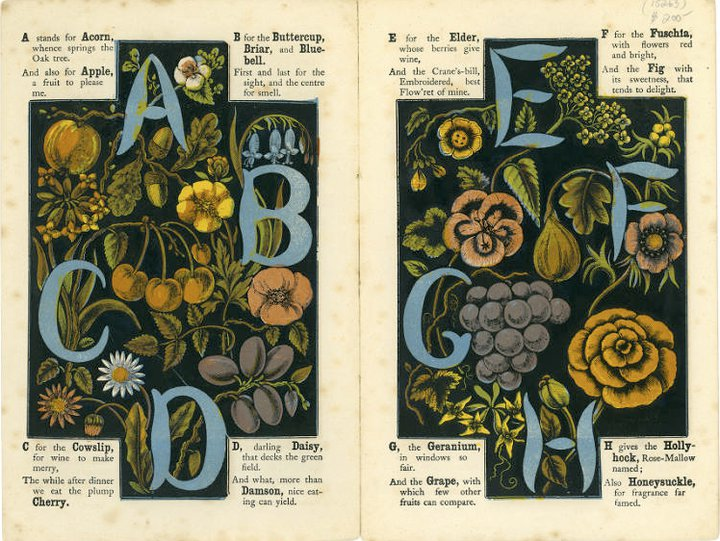 karenh: photos from a vintage alphabet book, The Alphabet of Flowers and Fruit c. 1871  (first discovered via Carin Berger on Facebook)