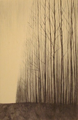proustitute :     戸村 茂樹/Shigeki Tomura. Born in 1951. Japanese Print maker.   (via  urfaust ;  poboh )