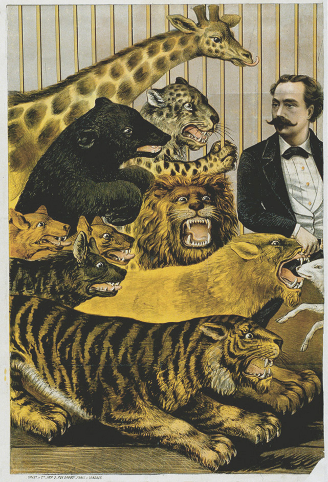sugarmeows: Vintage illustration of circus animals (via artbrutist)