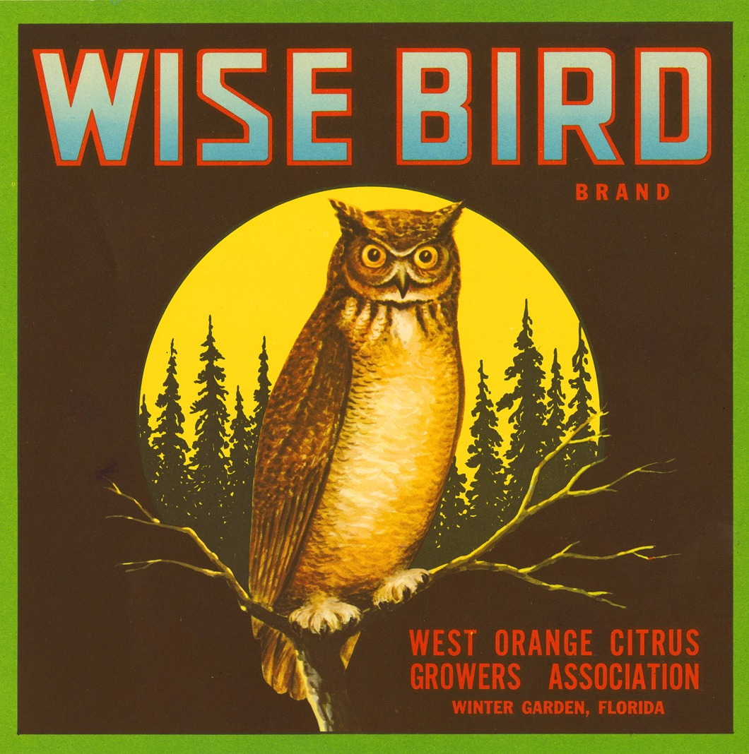 carnetimaginaire: Wise Owl, Citrus Label