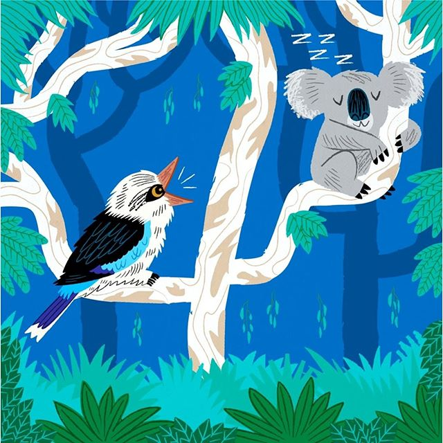 The Koala and The Kookaburra  #OutInTheWild