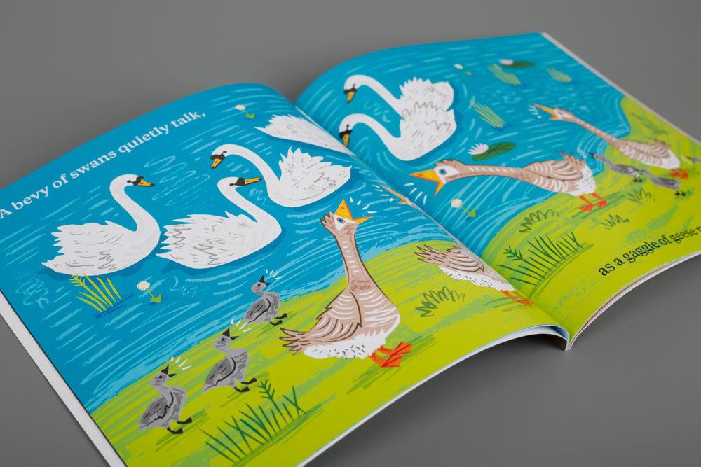 Geese_Ducks_spread.jpg