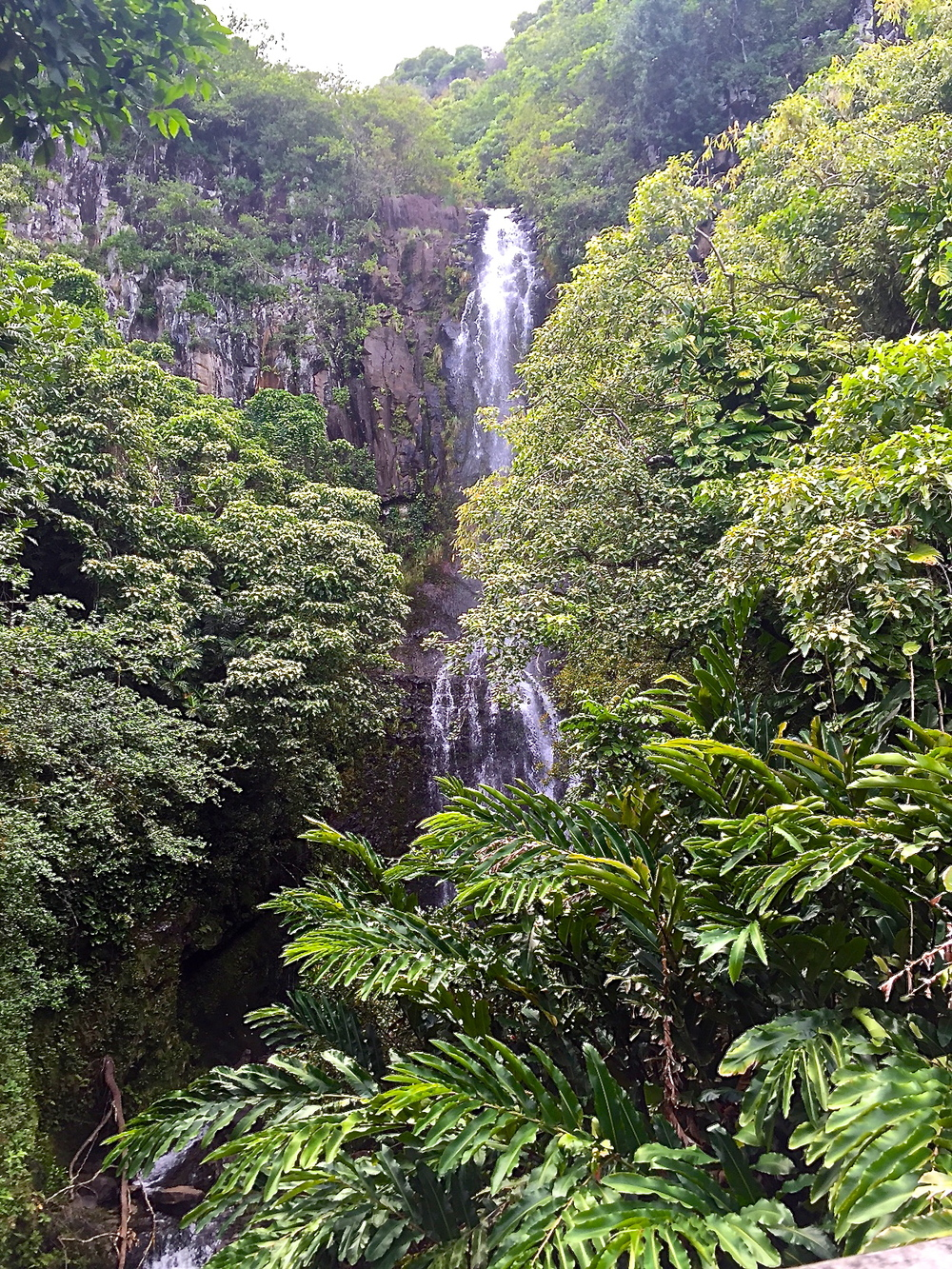 Waterfalls of Oahu-Waimea Valley. Gorgeous.