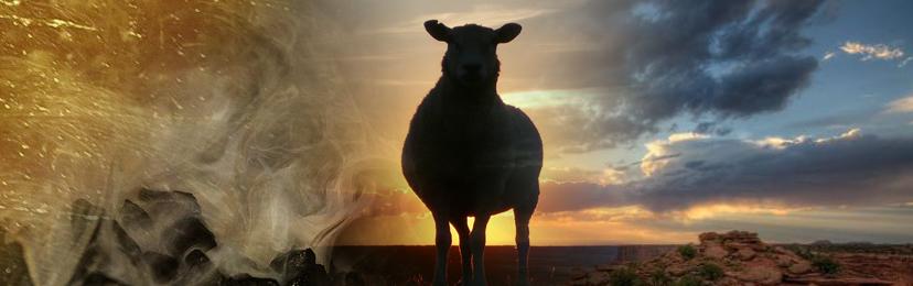 Isaiah - lamb.jpg
