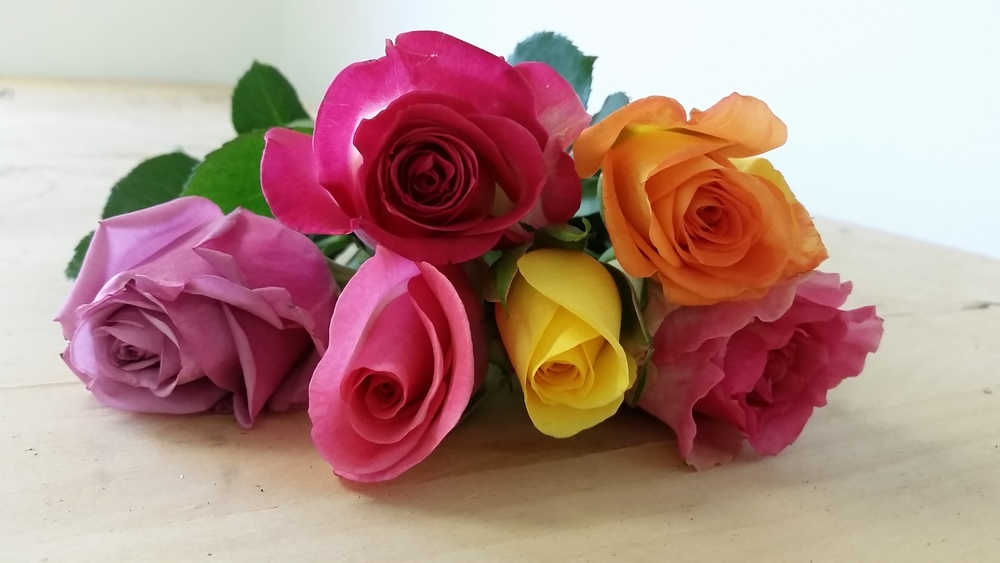This week's $10 wrap bouquet is six stems of gorgeous standard-sized roses in a bright, mixed palette! Call us at 218-728-1455 with the number of bouquets you'll be needing, as well as which day you'd like to pick up. See you soon!