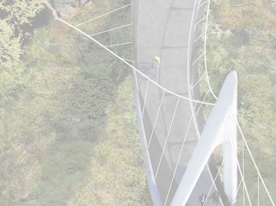 Mary Avenue Bicycle Footbridge