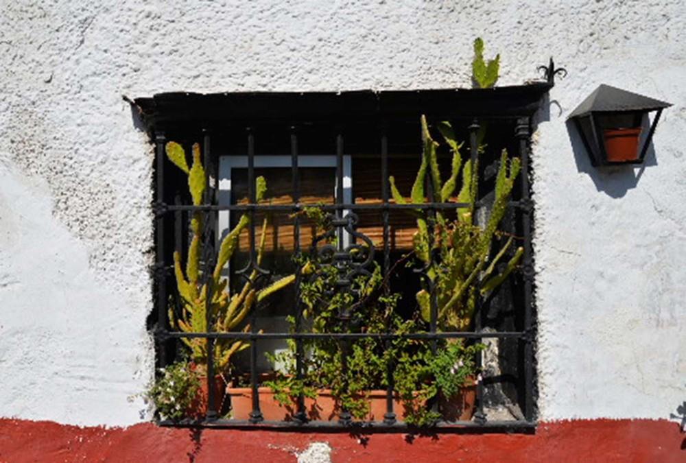WIndow Garden, Sacromonte, Granada