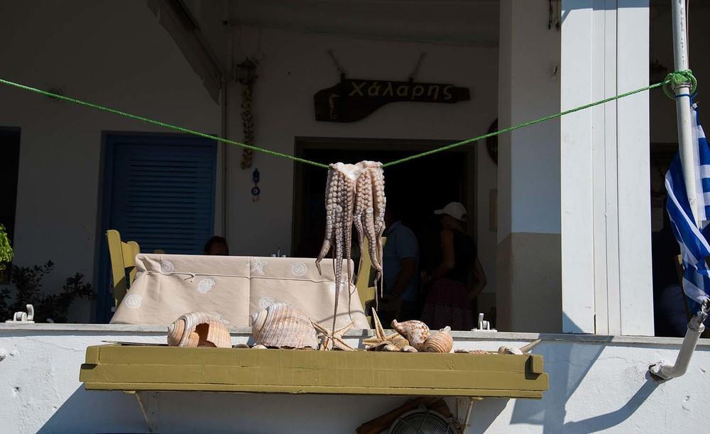 Octopus, Paros