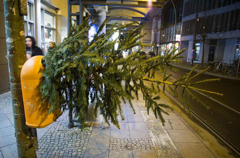 Christmas Tree Disposal, Berlin
