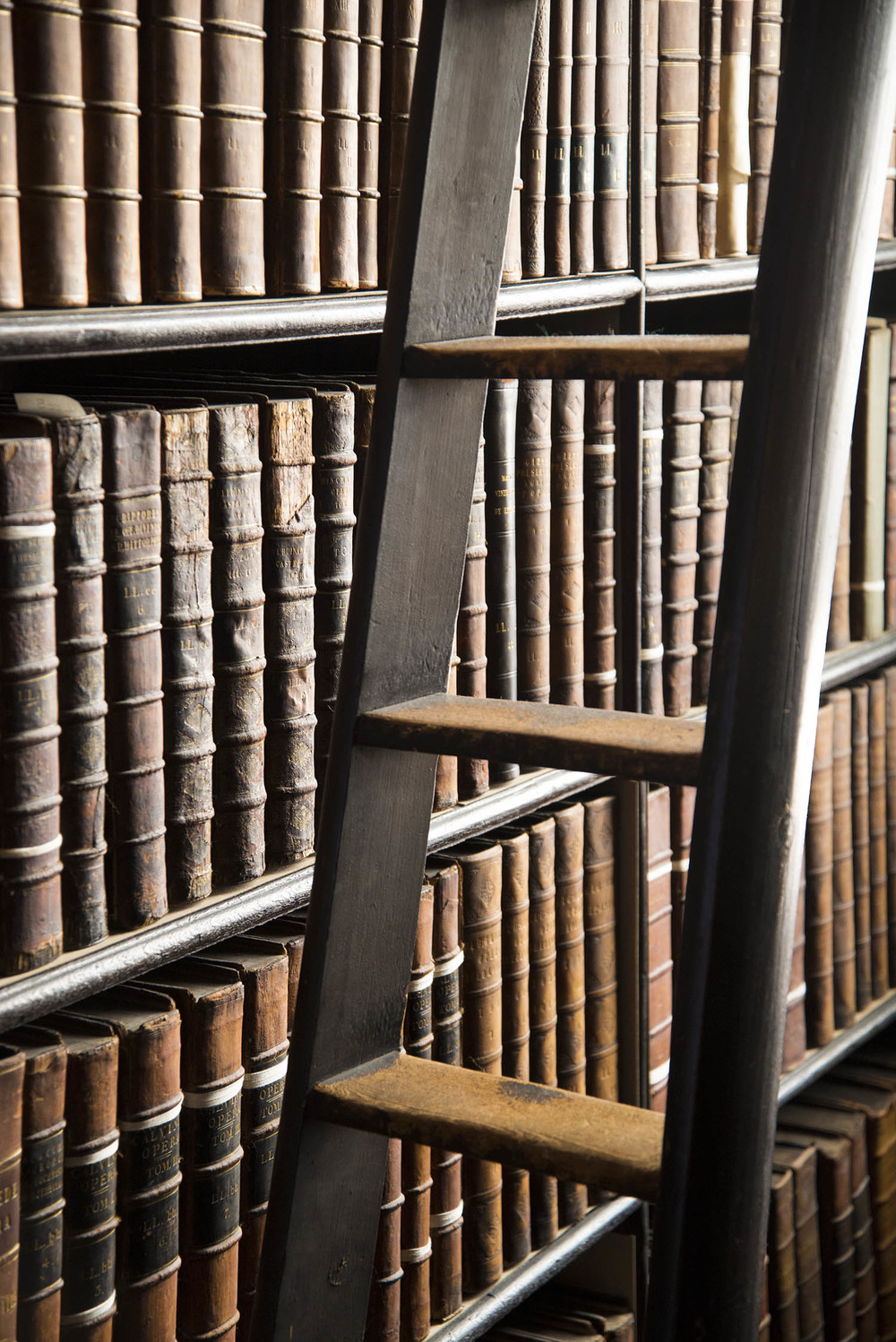 Shelf and ladder detail, The Long Room, Old Library, 1712, Trinity College, Dublin