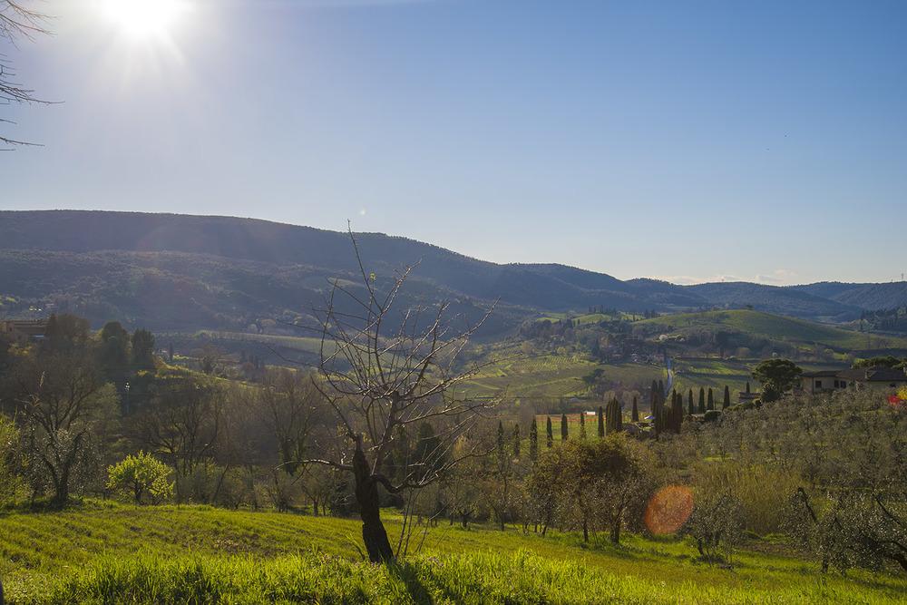 View of the hills around San Gimignano, Tuscany