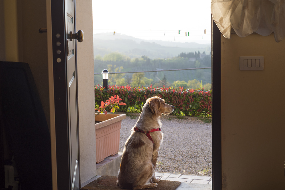 Olga looking out over Gambassi, Tuscany