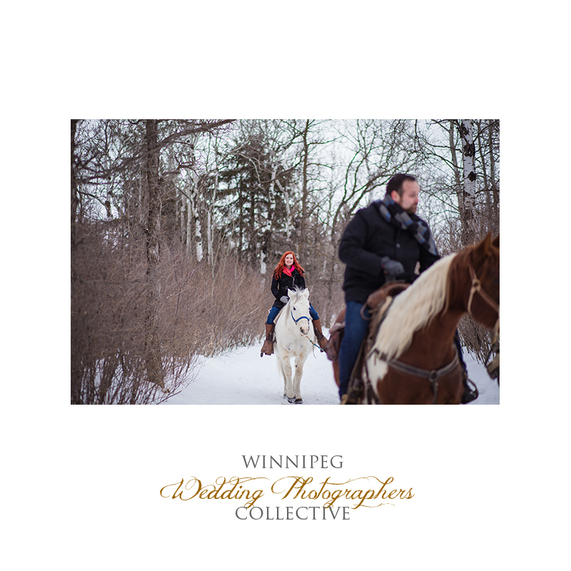 Winter Engagement with Horses007.jpg