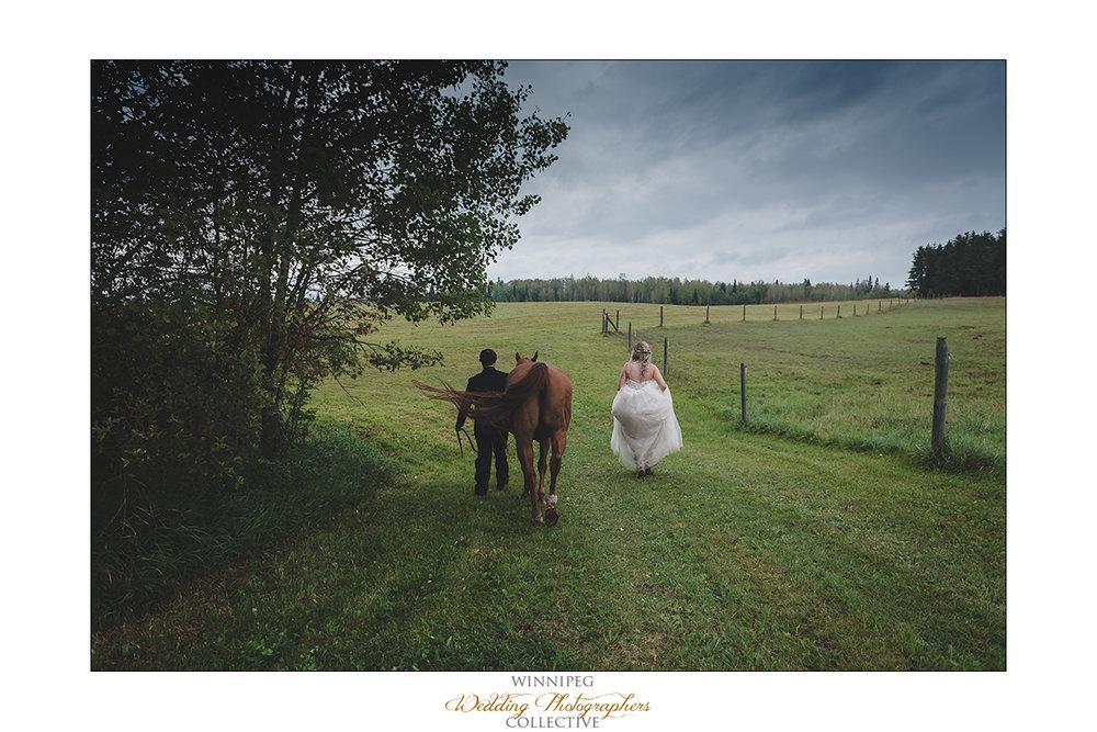 Shandi+Josh_Wedding_Dryden17.jpg