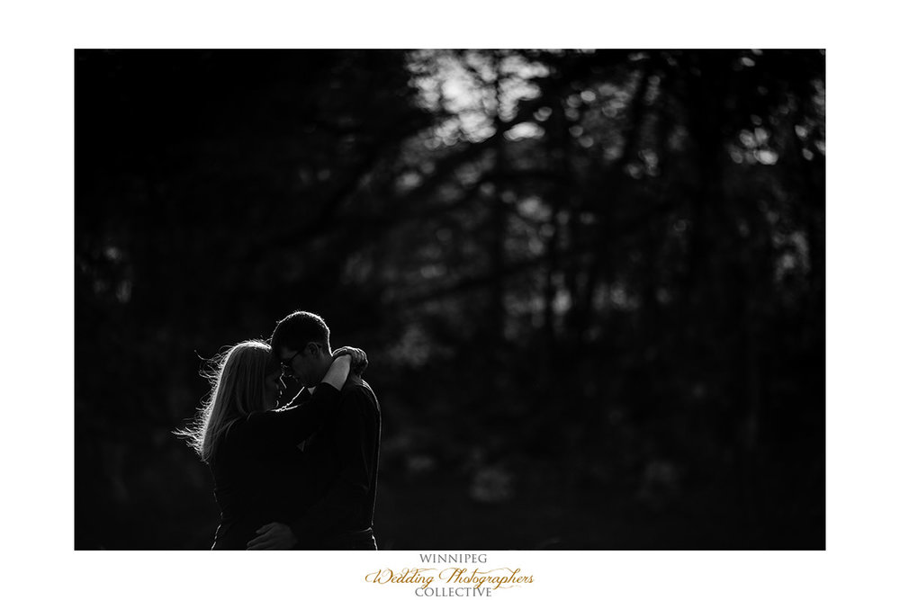 010_Lisa and Sean Autumn Fall Winnipeg Manitoba Park Engagement Shoot.jpg