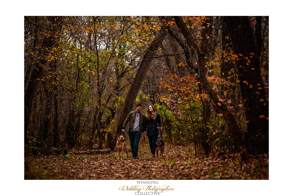 Michelle and Paul Autumn Park Engagement Shoot_003.jpg