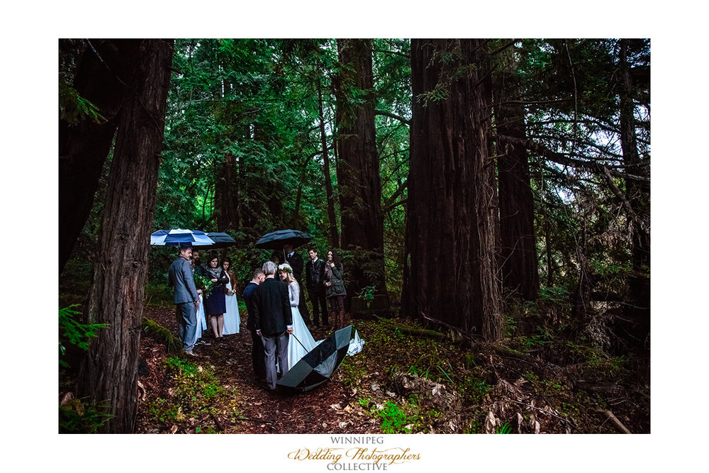 Big Sur California Rainy Wedding Elope Elopement Fit_017.jpg