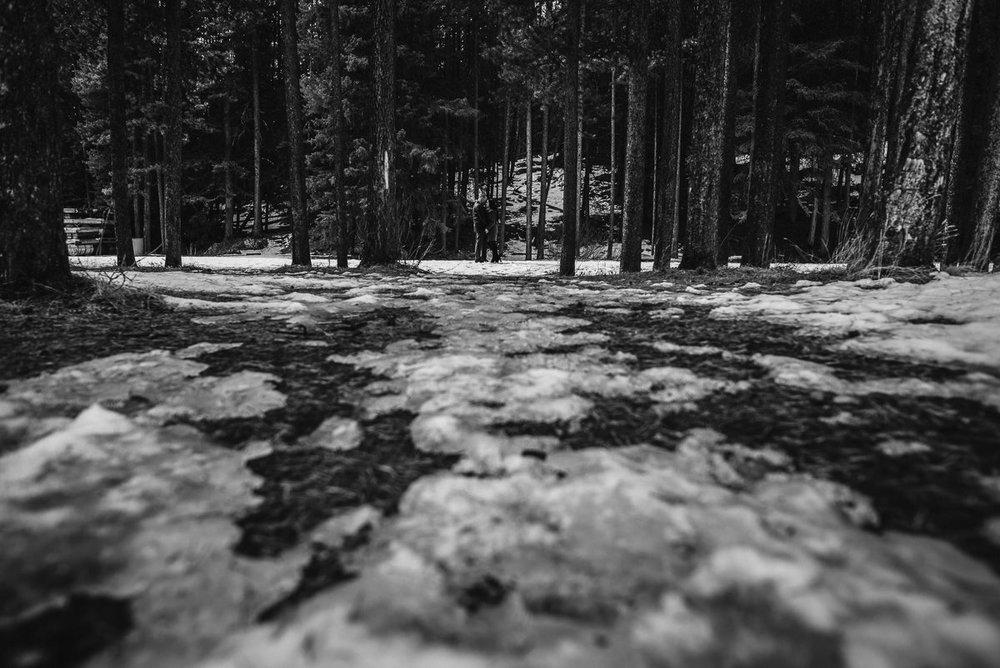 Ulyana+Taras_Engaged_Banff(C)-09.jpg