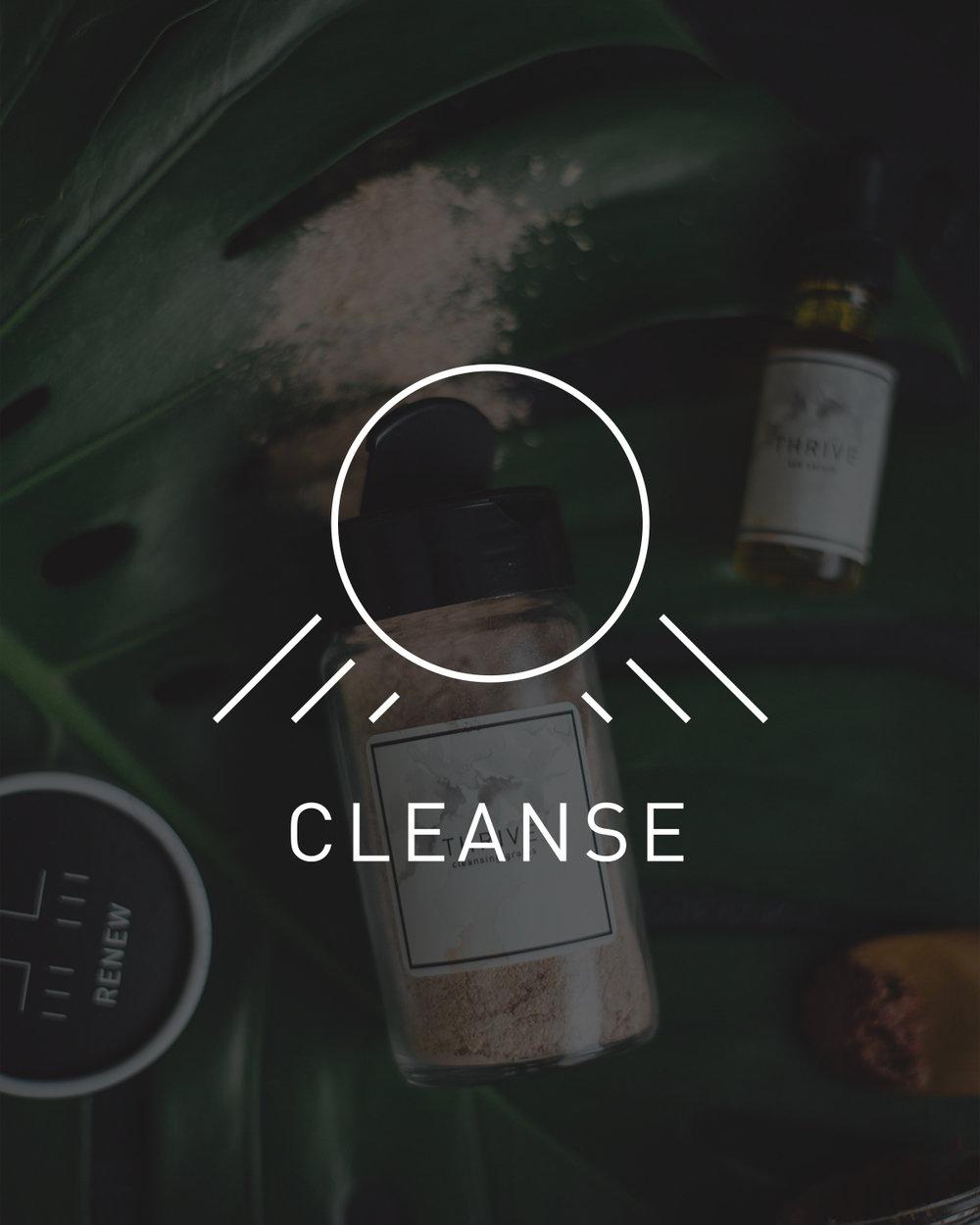 Cleanse.jpg