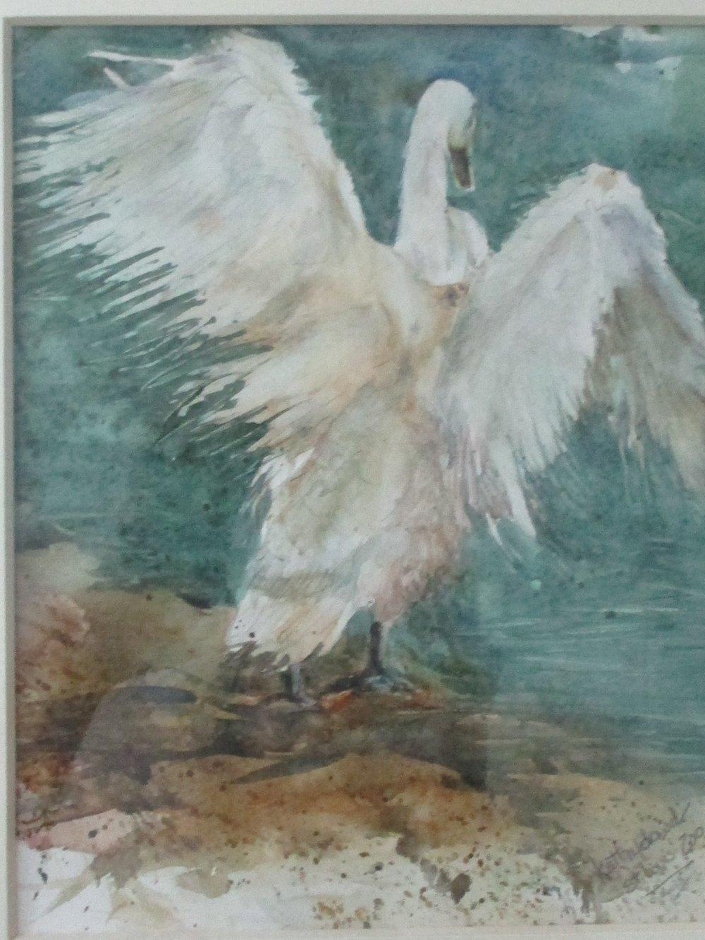 Kathy dowd, swan dance
