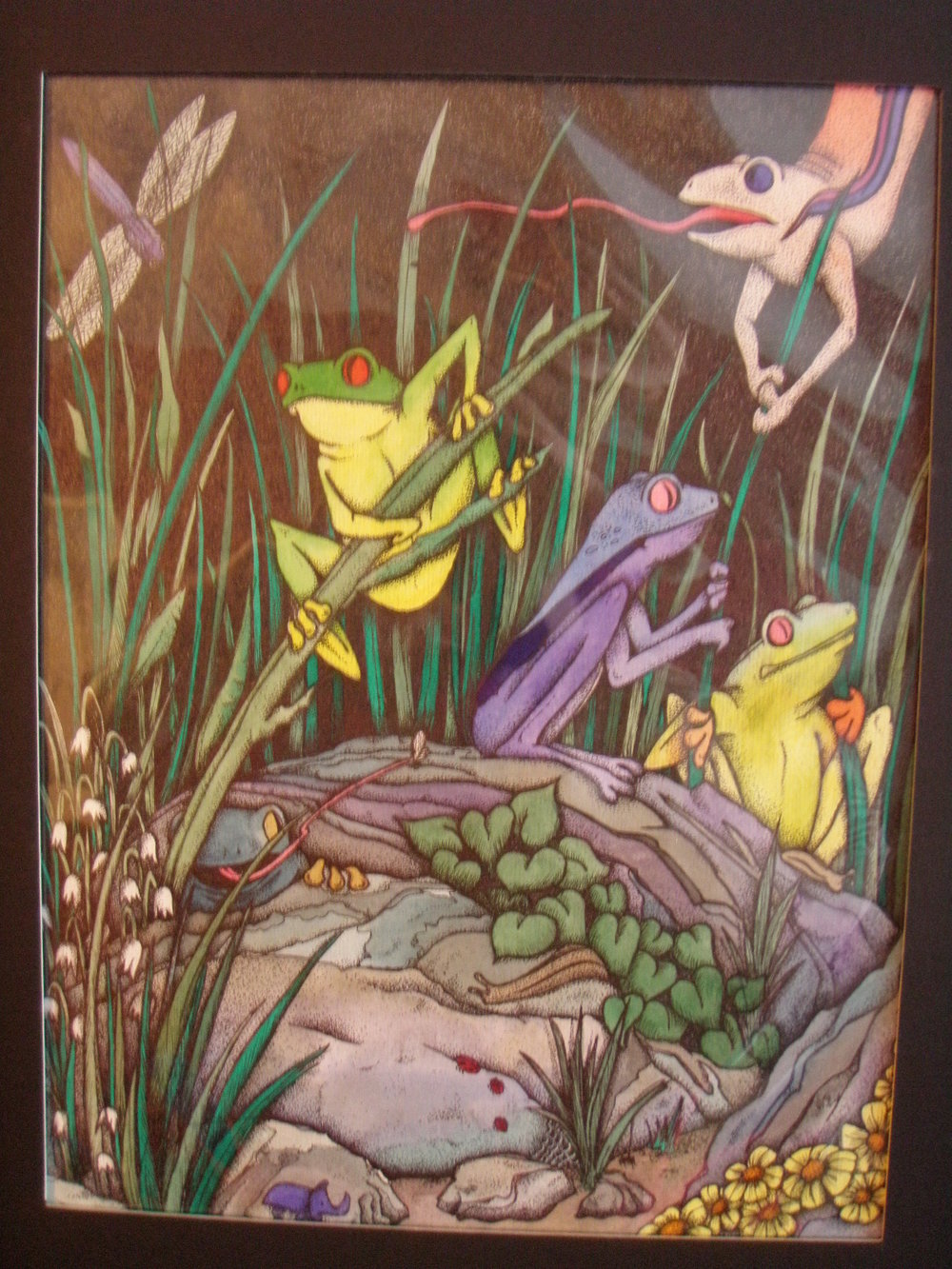 Lisa Conk, Frogs