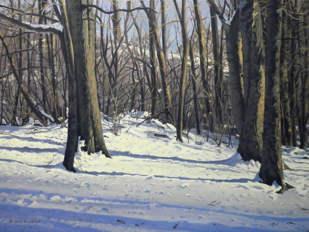 Daniel Fishback, Snowy Afternoon