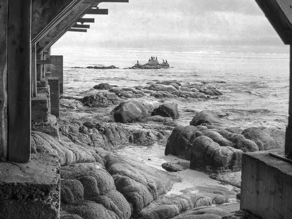 Beth Goyer, Monterey Pier