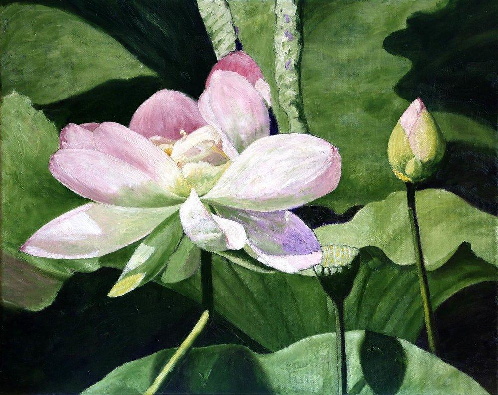 Elizabeth Moore, Serenity