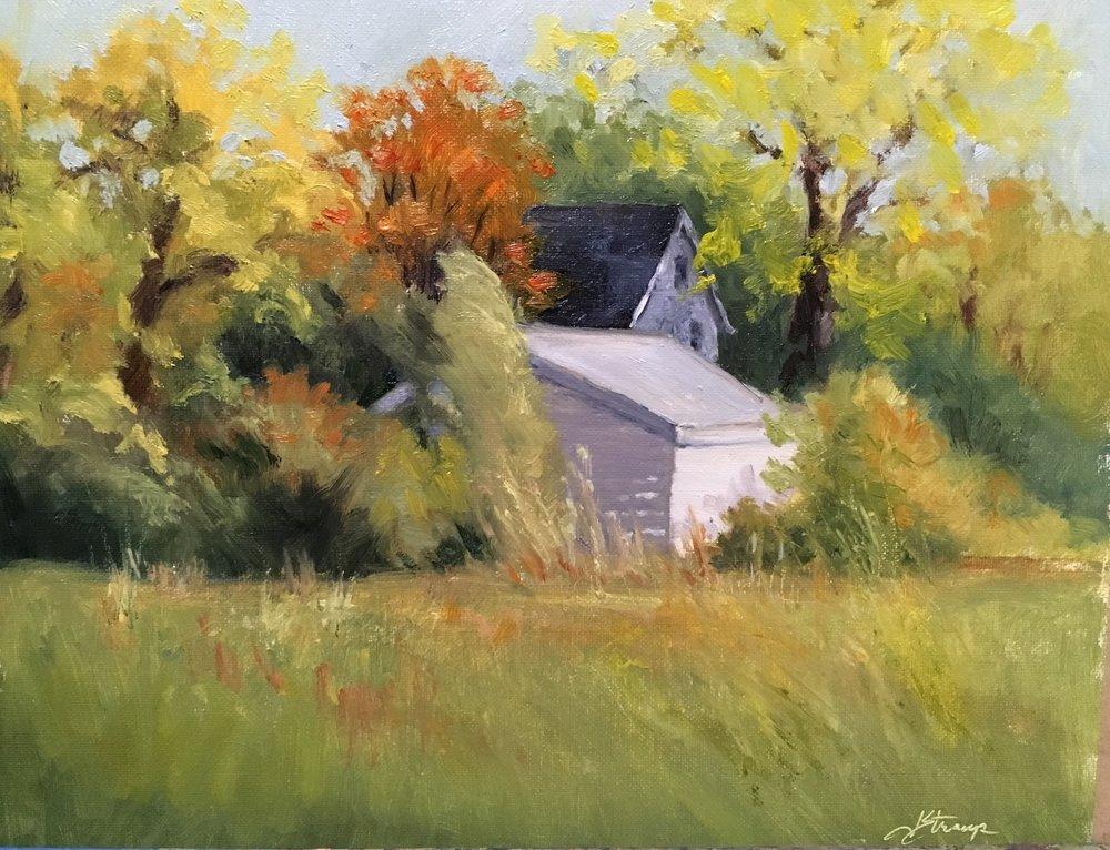 Judy Stroup, Fall Blush