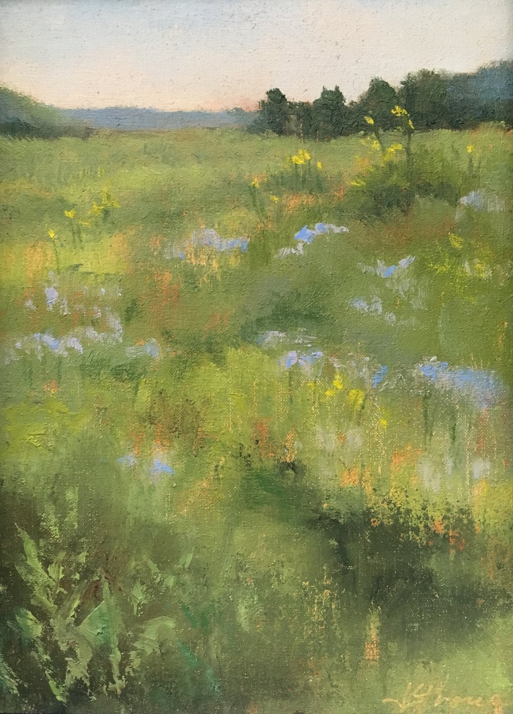 Judy Stroup, Prairie Grasses