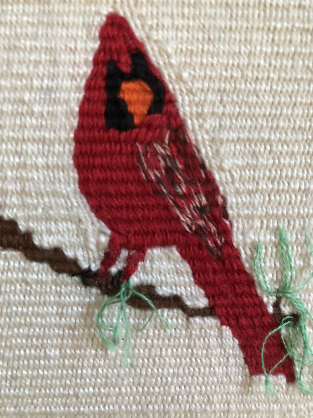 Cardinal on a Pine, Sally Vikman