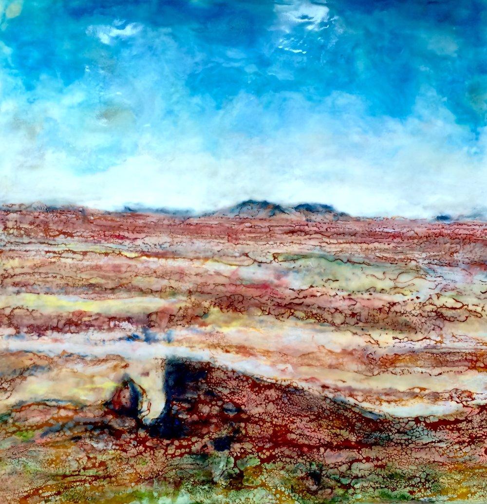 Painted Desert, Leah Merriman