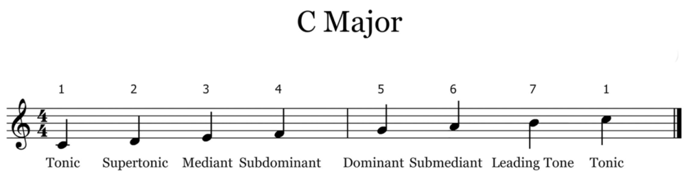 Scale Degrees (C Major).png