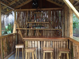 Our cute little tiki bar!