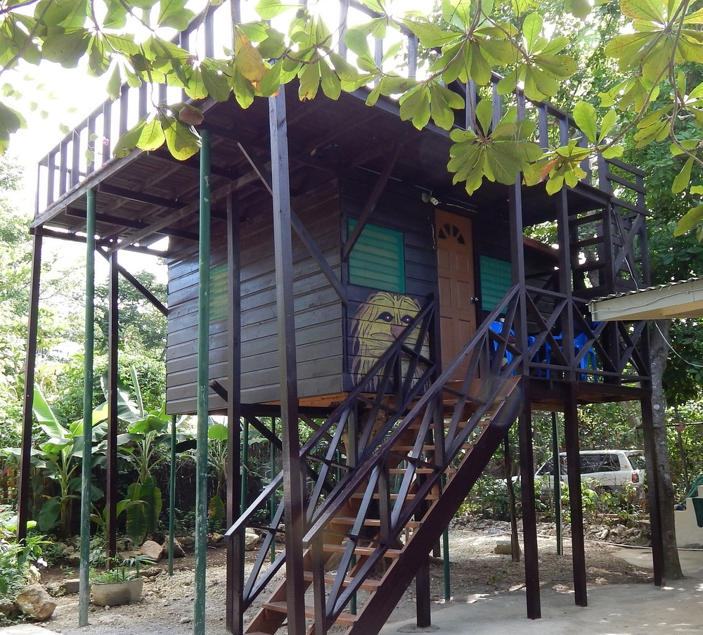 The Ackee Treehouse Cabin