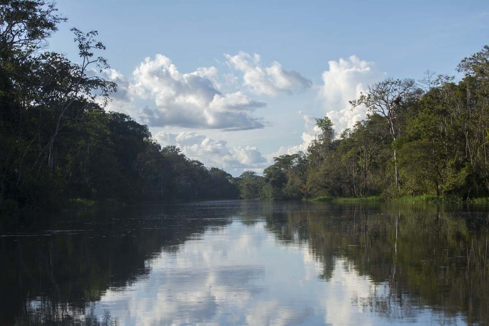 River1PtPerspective.jpg