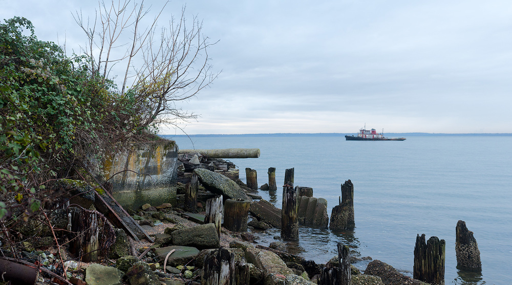 151106_port_of_bellingham_pano.jpg