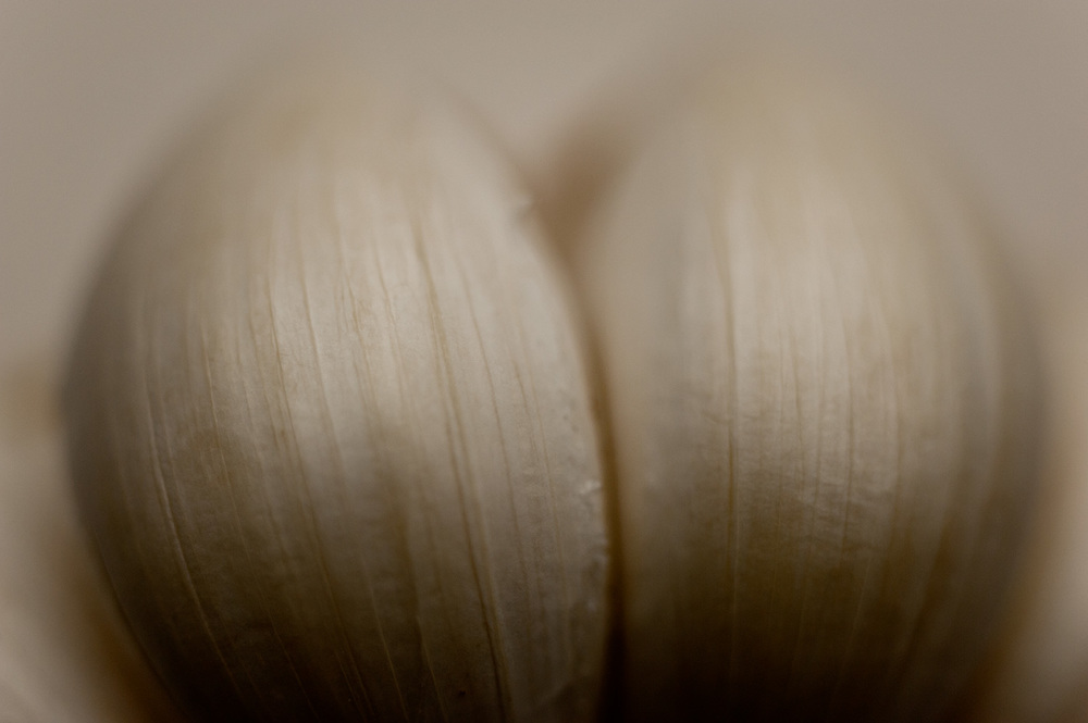 160328_sexy_garlic_3908.jpg
