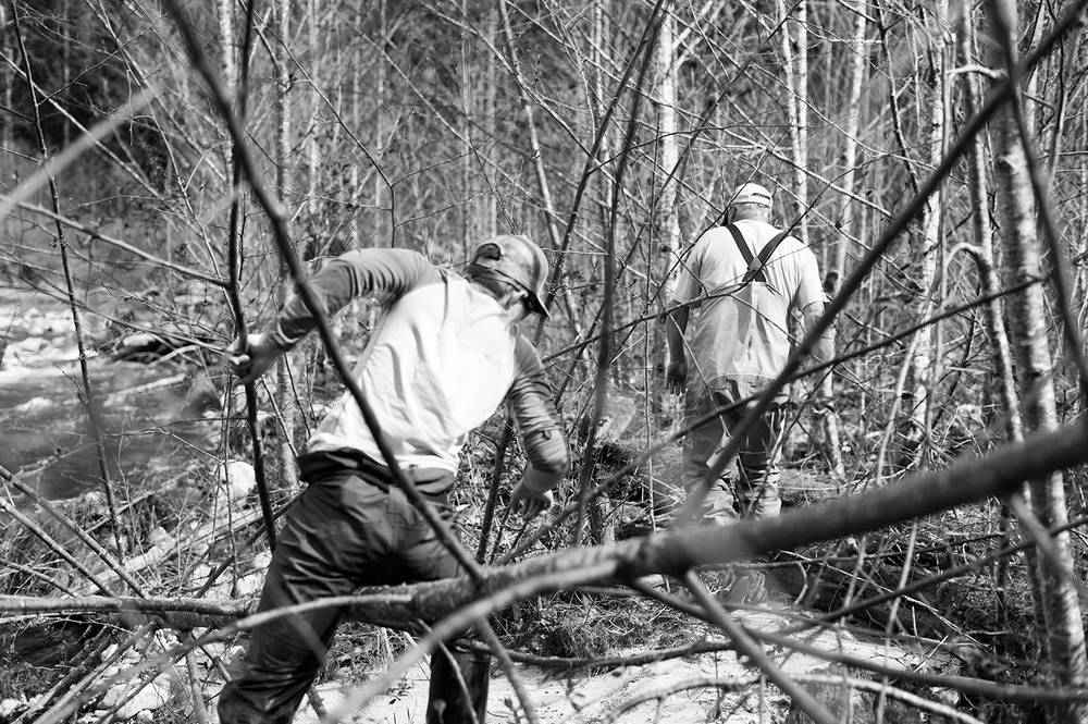 160403_pro_level_bushwhacking_4496.jpg
