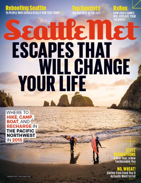 How to Hide a TV Seattle Met Magazine  January 2015