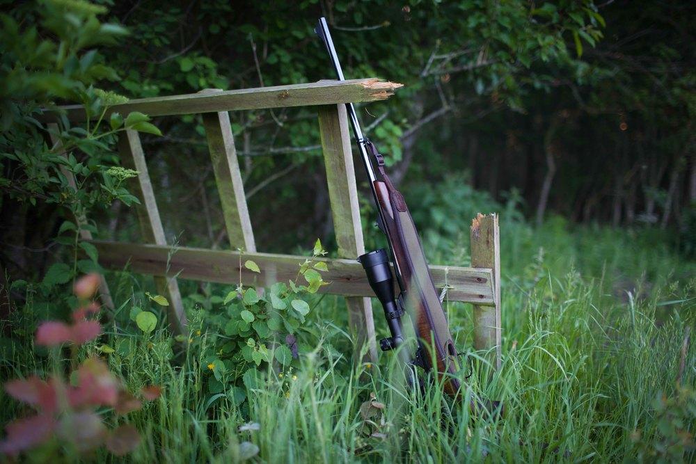 hunting-9-2.jpg