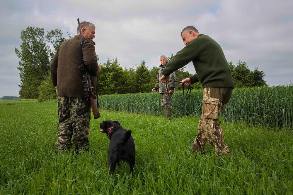 hunting-7.jpg