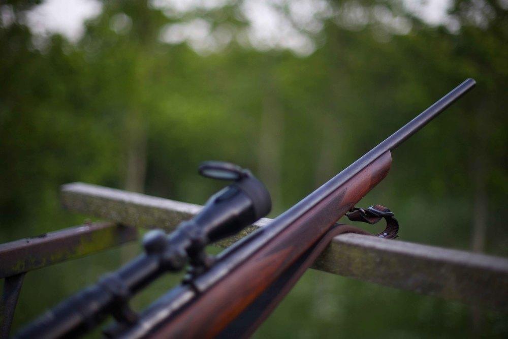 hunting-8-3.jpg