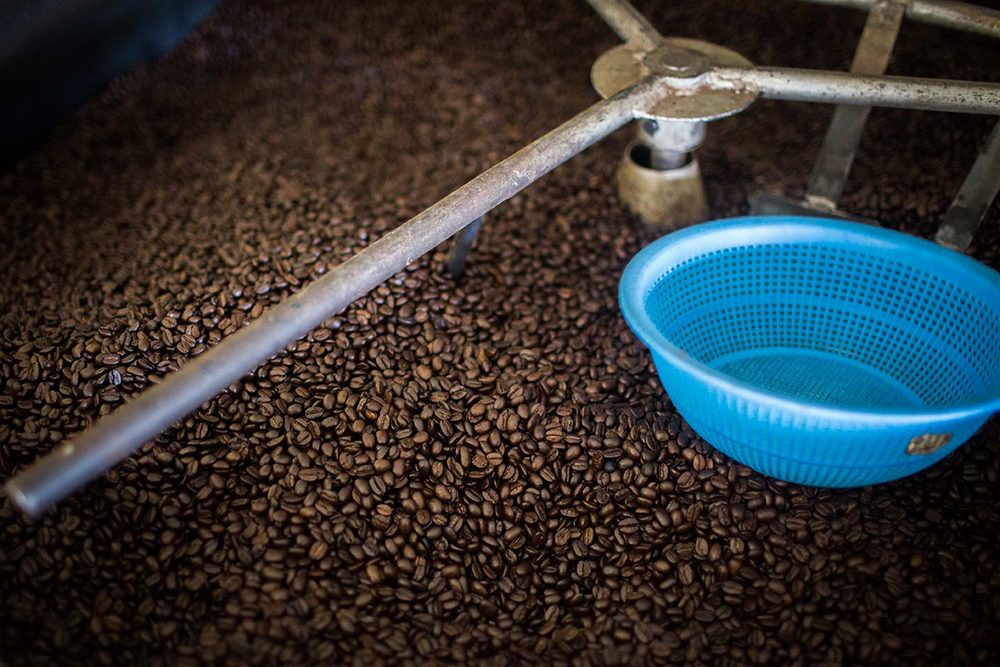 Mundo Verde coffee beans being roasted at Loma Linda Organic Coffee Farm.