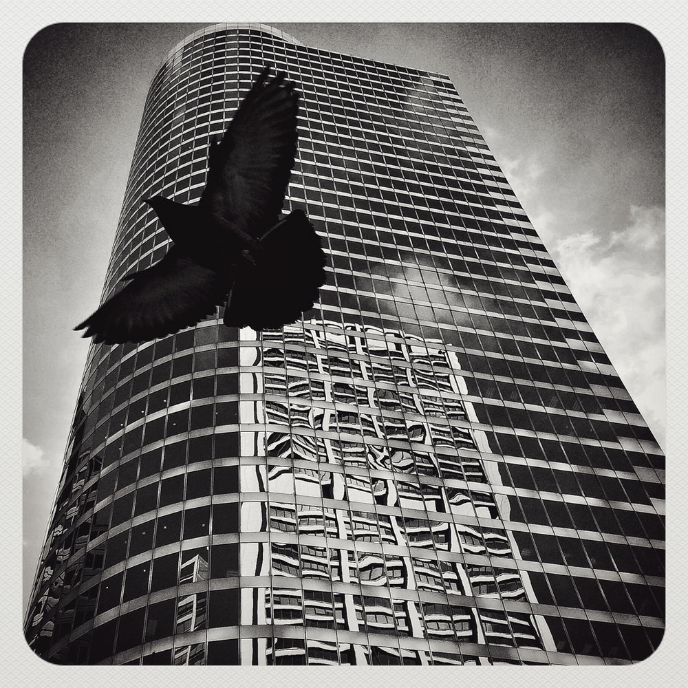 SERIO_iPHONEOGRAPHY_CHICAGO_0011_WEB.jpg