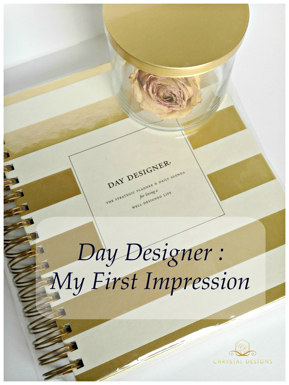 Day-Designer-Whitney-English-First-Impression-Main-Pic.jpg