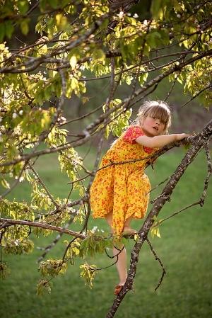 180718 climb tree - confidence 6.jpg