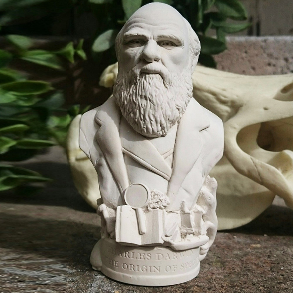 """Bust of Charles Darwin made in British Gypsum Plaster. The Origin of Species was a publishing phenomenon. Darwin outlined his evolutionary theory which challenged the Church and establishment on the origin of life. As with all Famous Faces there are objects around the base. For this bust we have included the evolution of man, giant tortoise, iguanas, magnifying glass, notebooks and the HMS Beagle The etch around the base reads - """"ON THE ORIGIN OF SPECIES"""""""